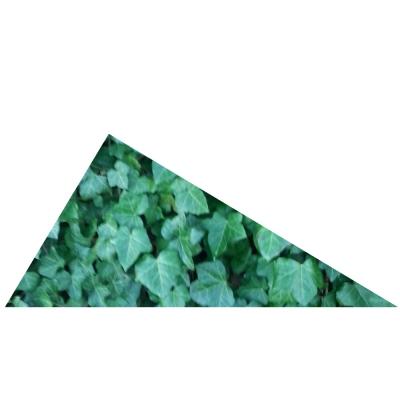 Rechtwinkliges Dreieck mit ganz furchtbar langem Namen zu Testzwecken