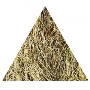Gelbes Dreieck, gleichseitig