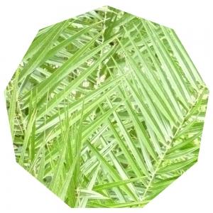 Grünes Neuneck