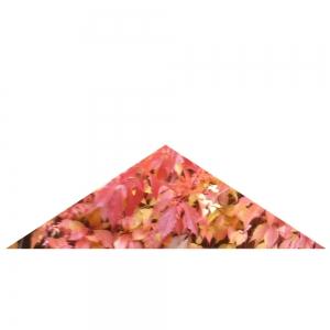Rotes Dreieck, gleichschenklig