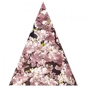 Rotes Dreieck, hoch